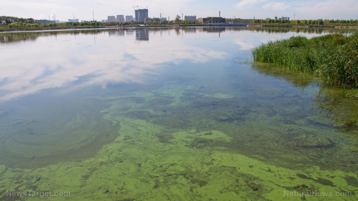 Now Detroit is dealing with toxic chemicals in the drinking